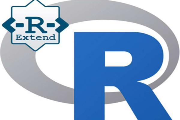 R Extend Project